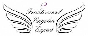 PEE logo